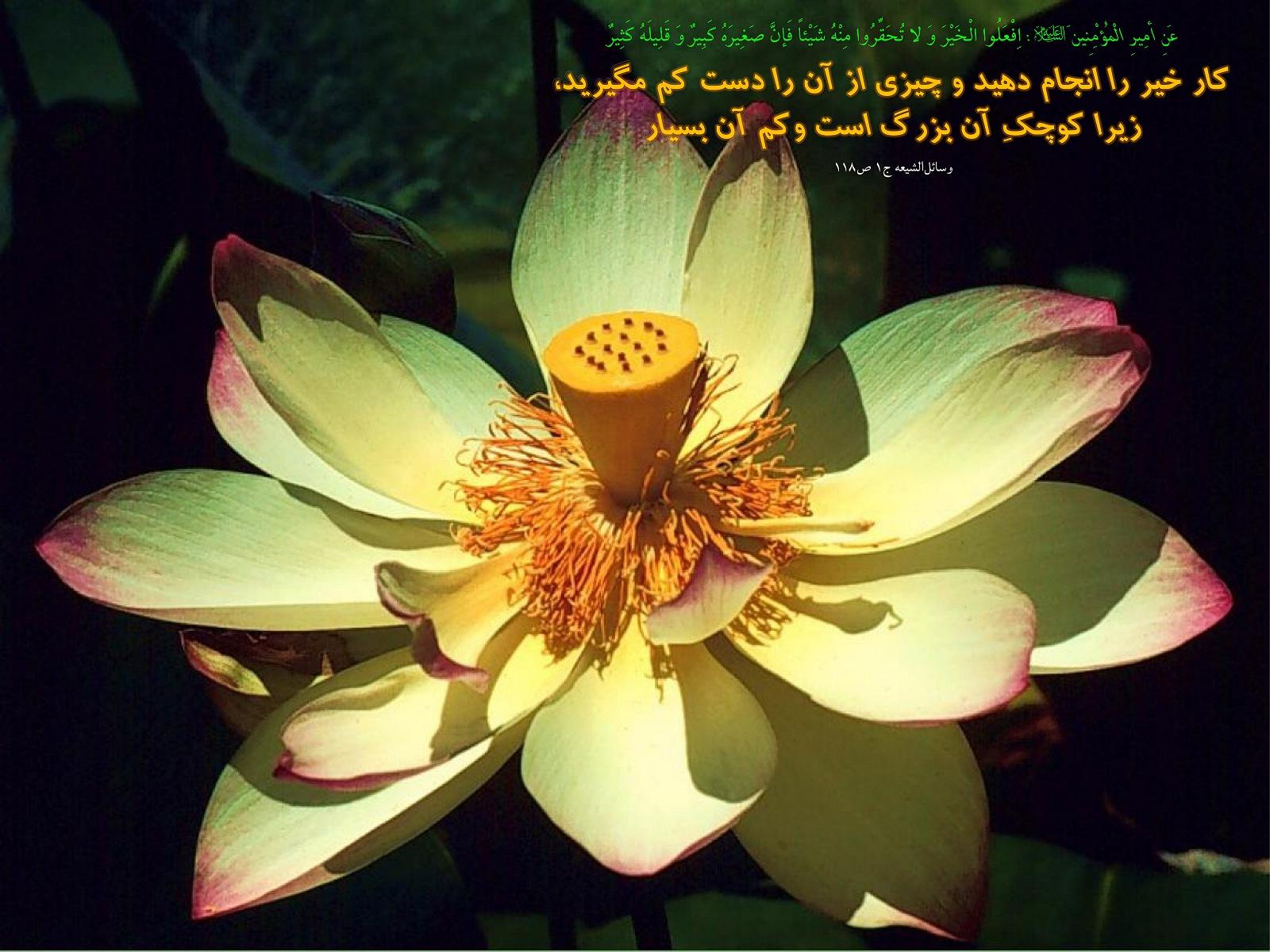 http://anti211.persiangig.com/hidith-tasviri/641Hadis%20H186.jpg