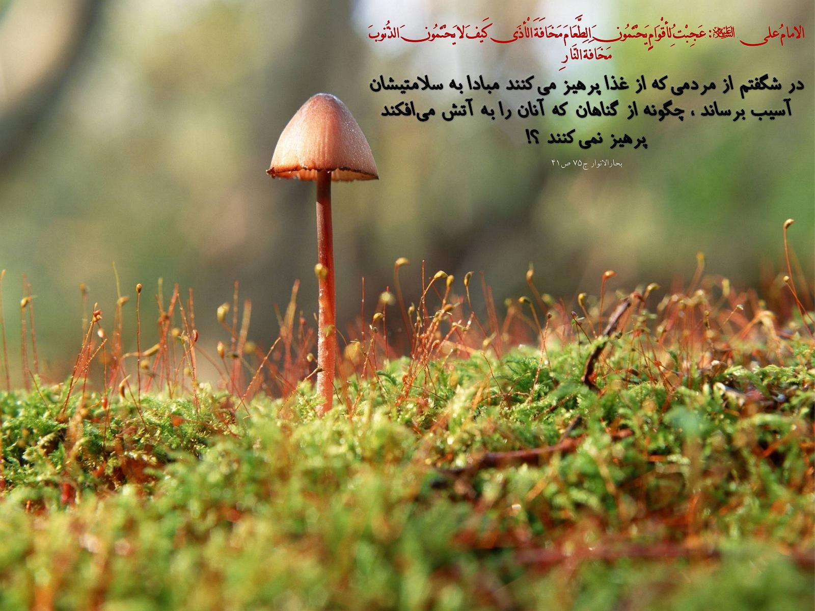 http://anti211.persiangig.com/hidith-tasviri/641Hadis%20H194.jpg