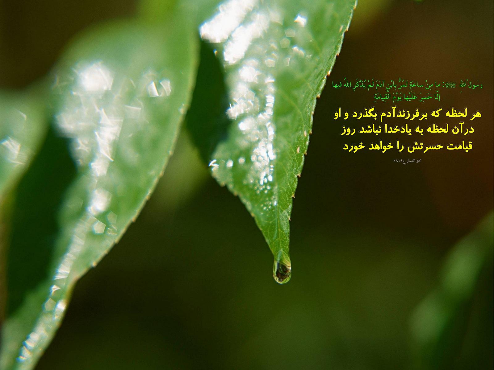 http://anti211.persiangig.com/hidith-tasviri/641Hadis%20H196.jpg