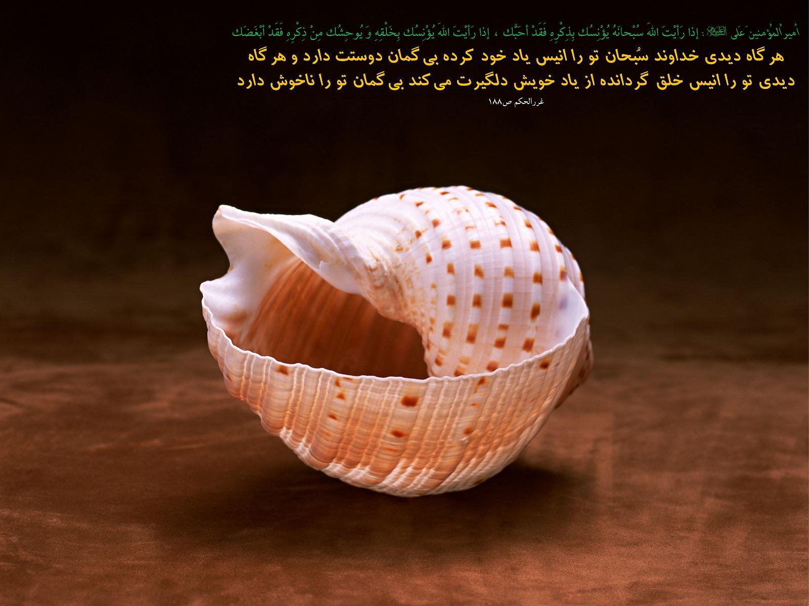 http://anti211.persiangig.com/hidith-tasviri/641Hadis%20H197.jpg